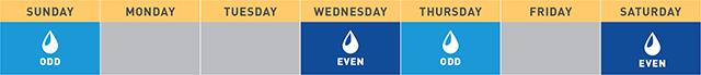 watering calendar