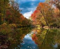 Petrova-Fall-Reflections